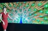 Technologie LG MicroLED  získala na veletrhu Light Convergence Expo 2021 tzv. Prezidentskou cenu